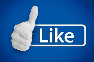 Social Networking 101 Facebook Likes